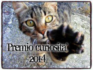 In attesa delle nostre gatte, ecco il premio Gatto Curioso:)